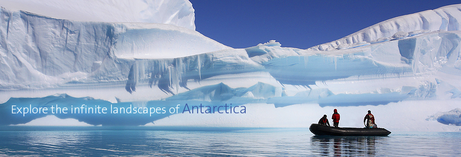 Antarctica cruise argentina vacations by argentina for less for Best trips to antarctica