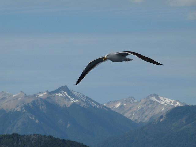 Nahuel Huapi National Park, Lake District, Argentina