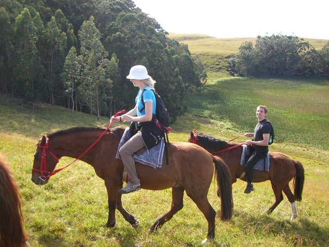 Riding past the crater of extinct volcano Rano Aroi on our way to the highest point on Easter Island.