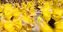 Rio Carnival Tour, Brazil Travel, Brazil For Less