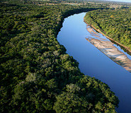 Pantanal Tour, Brazil Travel, Brazil For Less