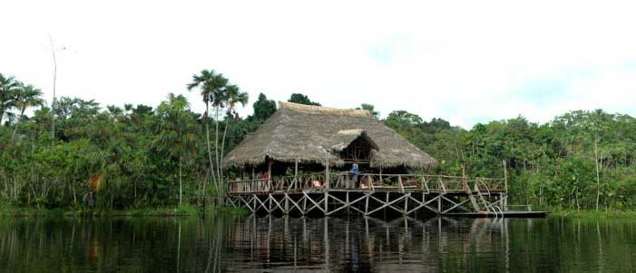 Amazon Lodges Sacha Lodge Photos Amp Info Ecuador Hotels