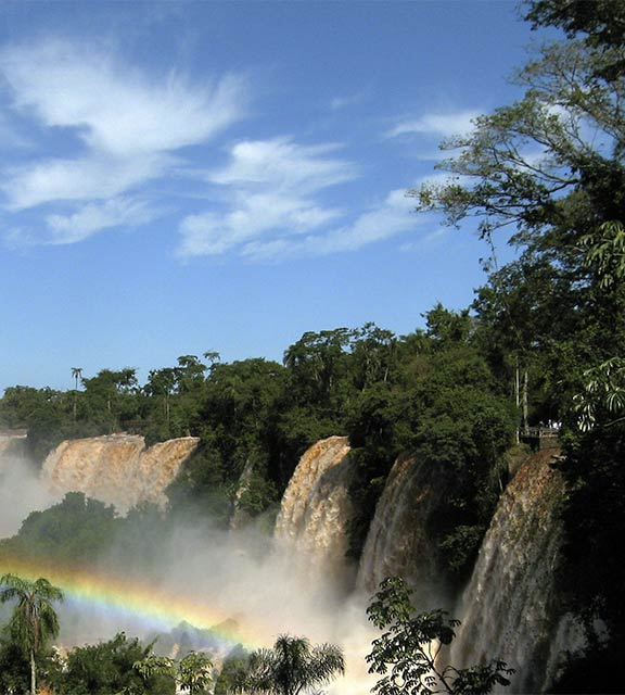 A rainbow forming amidst the lush green vegetation and falling water of Iguazu Falls.