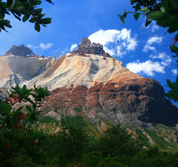 Trees and greenery at the foot of a multi-colored mountain in Torres del Paine National Park.