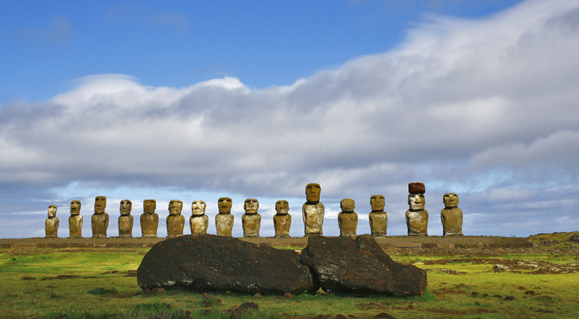 A series of moais, large human figures made of stone, behind a moai on its back.