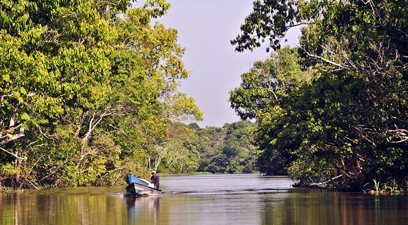 A man piloting a small motorized boat through a waterway in the Brazilian Amazon Rainforest.