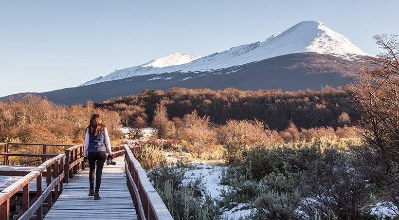A visitor with a camera walking along a wooden walkway at Tierra del Fuego National Park.