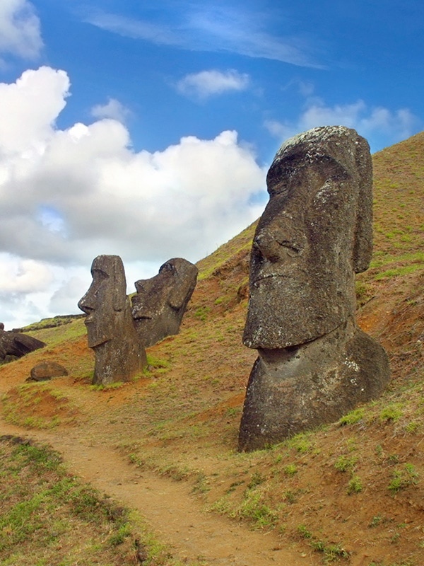 A number of the large human figures known as moais sticking out of the dirt on Easter island.